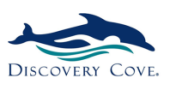 Buy From Discovery Cove's USA Online Store – International Shipping
